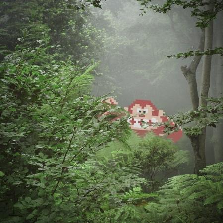010-gorilla-in-the-mist