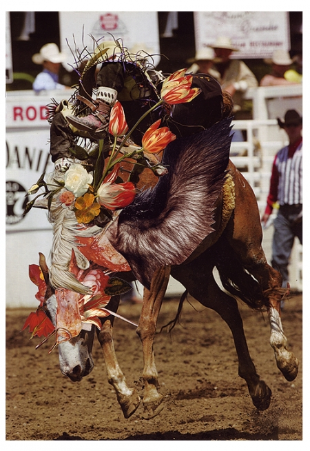 033-rodeo