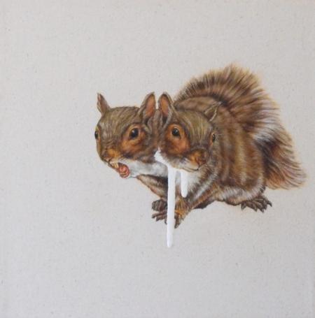 001-dicephalic-squirrel.jpg