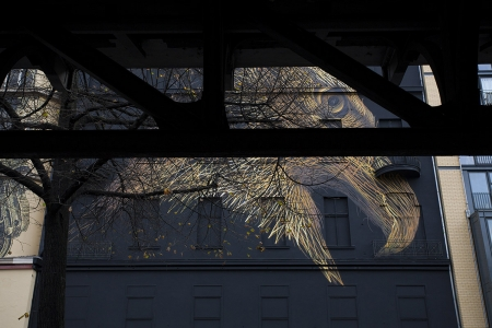 003-defoliation-p-berlin-2014