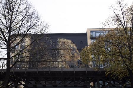 005-defoliation-p-berlin-2014