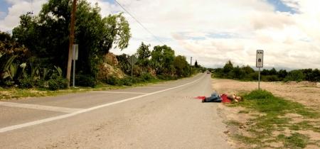 010-roadkill-4.jpg