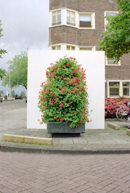 005-geranium-hill