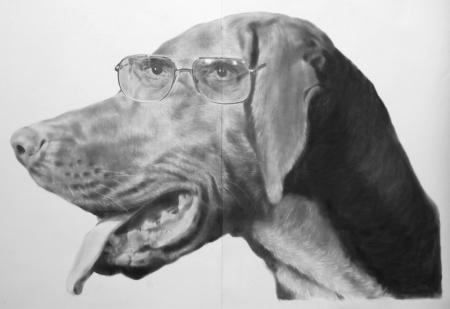 007-4_eyed_dog