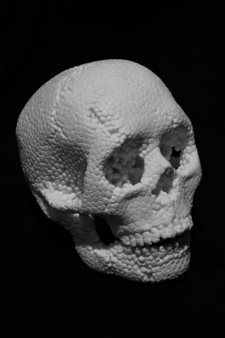 004-skull