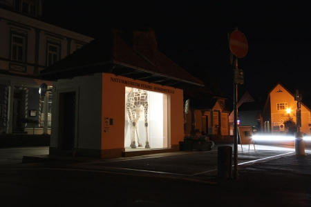 023-naturmuseum