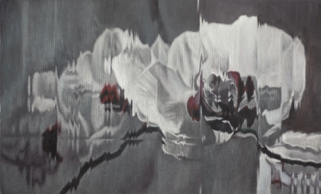 013-orchids