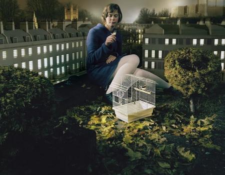 015-birdcage-2005.jpg