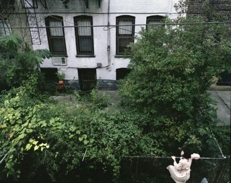 018-backyard.jpg