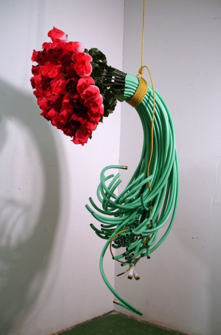 025-roses-hoses