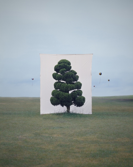 002-tree-2.jpg