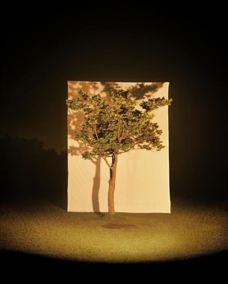 004-tree-4.jpg