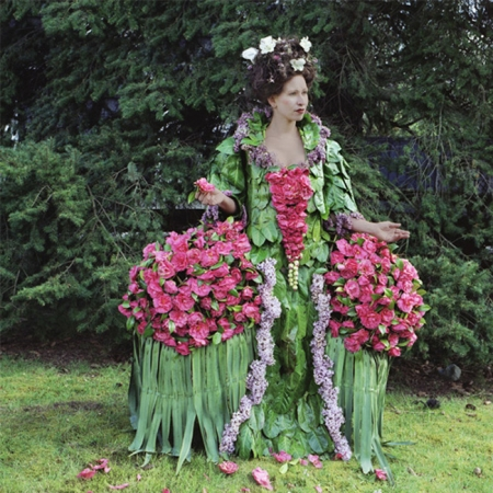 001-camellia-countessa