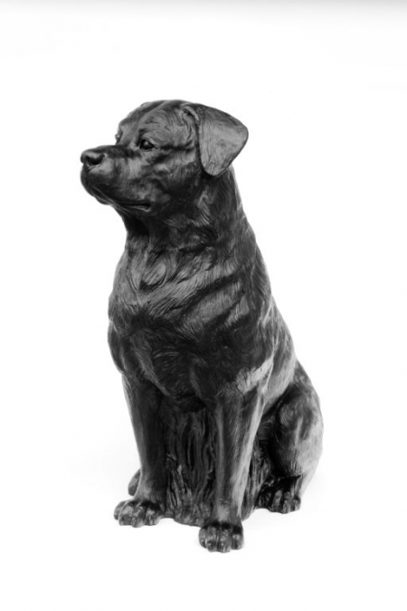 045-rottweiler-2005