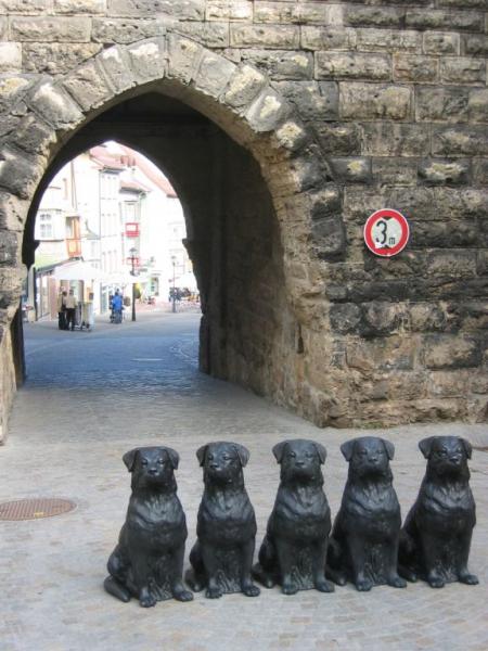 047-rottweiler-2005