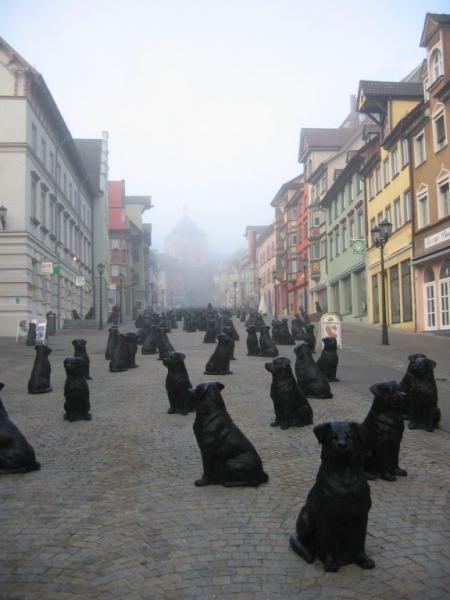 049-rottweiler-2005