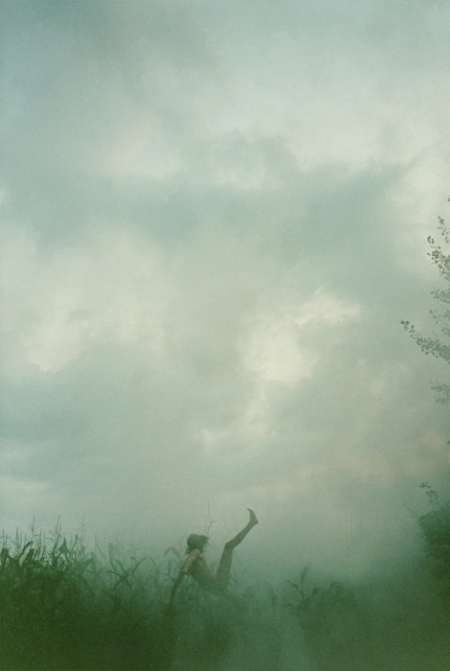 006-falling-cornfield-2007.jpg