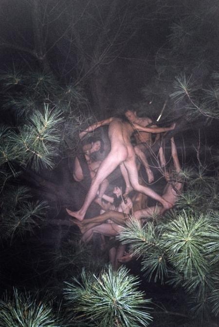 042-tree-1-2003.jpg