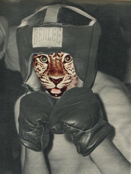 014-el-boxeador