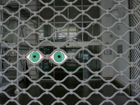 011-les-yeux-de-la-grille