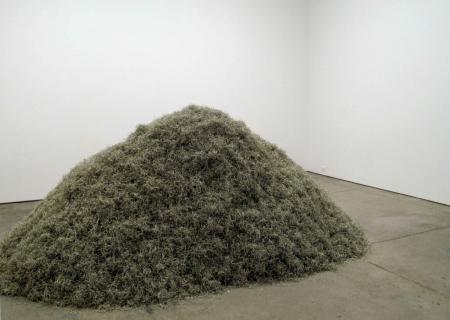 012-shredded-money-2008
