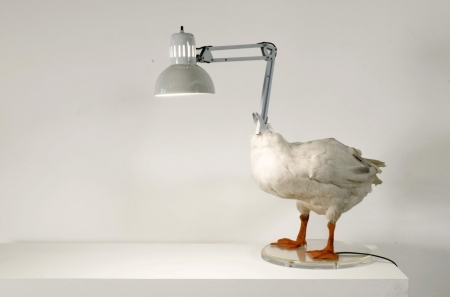 036-the-duck-lamp-2002