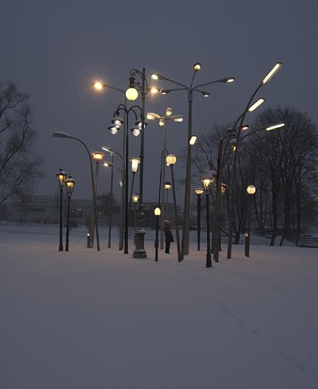 024-streetlampforest