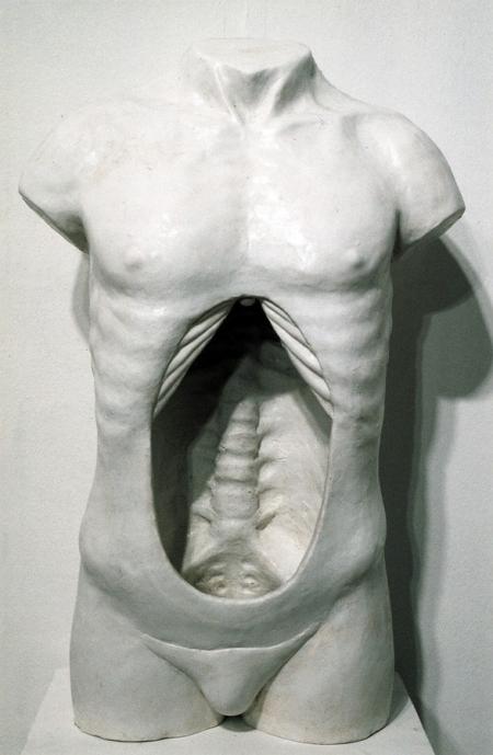 022-hollow-torso.jpg