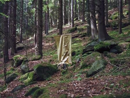 006-golden-curtain