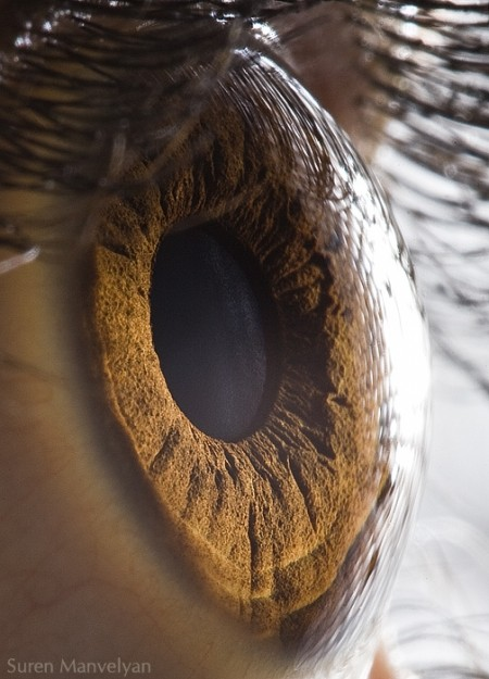 Suren Manvelyan: Your Beautiful Eyes