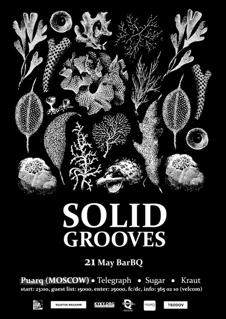 SOOLID GROOVES / PaurQ (Moscow) @ BarBQ