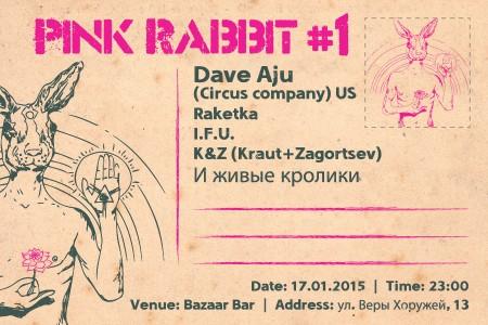 17/01/2014 PINK RABBIT #1: Dave Aju (US) @ Bazaar Bar