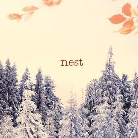 Nest: Nest