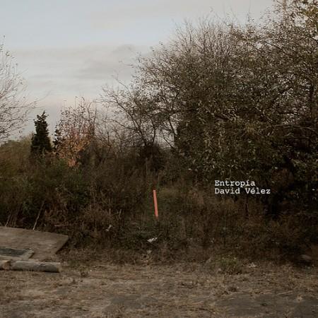 David Velez: Entropia