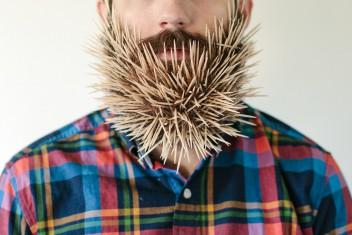 Модификация бороды