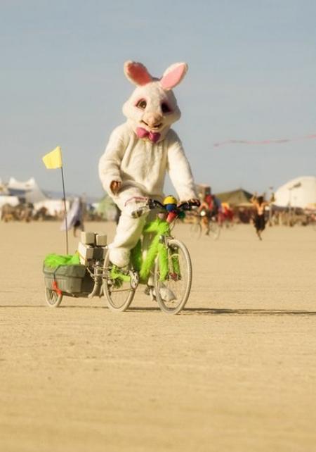 037-bunnies-take-2005.jpg