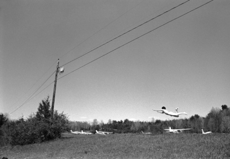 014-flying-pictures