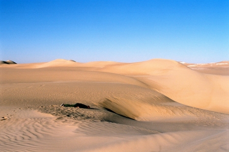 010-dead-in-the-great-sand-sea