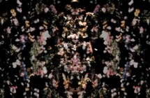 Nick Knight: Tribute to Alexander McQueen